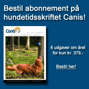 Hundetidsskriftet Canis