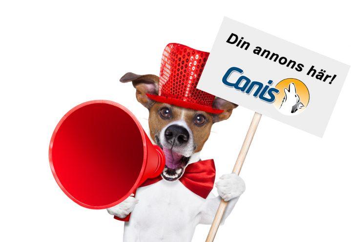 Målrettet annoncering mod seriøse hundeejere!