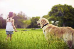 10 gode råd om hverdagslydighed